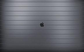 Wallpaper Apple, Apple, Steel, EPL