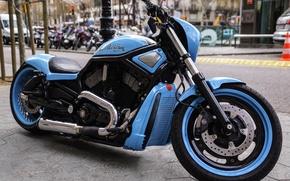 Picture design, motorcycle, bike, Harley-Davidson, Harley Davidson