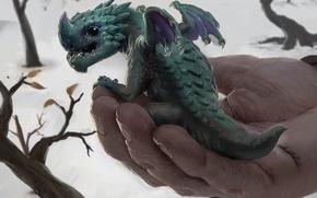 Picture fantasy, kindness, hand, art, dragon, Peter Stapleton