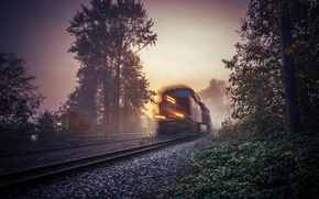 Picture fog, train, morning