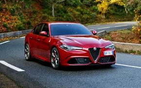 Picture Alfa Romeo, Alfa Romeo, The front, Giulia