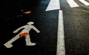 Picture autumn, asphalt, sheet, silhouette, the transition, censorship