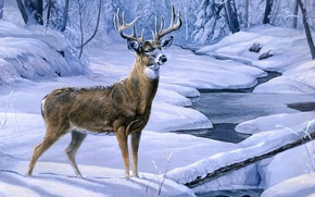 Picture winter, forest, snow, stream, deer, forest, painting, winter, snow, animal, painting, deer, November snow, creek, …