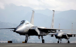 Picture Eagle, F-15, UNITED STATES AIR FORCE, Douglas, McDonnell, American all-weather fighter fourth