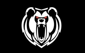 Picture background, white, head, black, Bear, roar