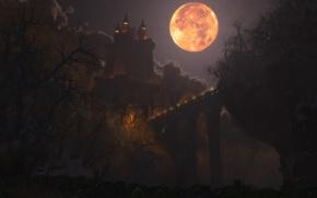 Wallpaper graphics, digital, bridge, Happy Halloween, Dracul, castle, lights, the moon, night