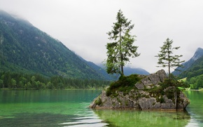 Picture forest, mountains, lake, island, Bayern, Berchtesgaden