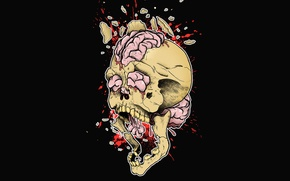 Picture the explosion, squirt, fragments, creative, figure, skull, art, brain, black background, print, the gap, print