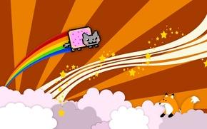 Picture cat, clouds, Fox, cat, fun, nyan, nyan cat
