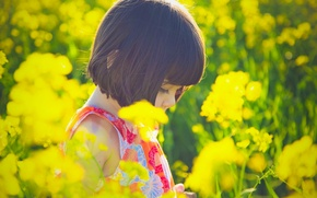 Picture the sun, flowers, yellow, nature, children, background, situation, Wallpaper, mood, plant, dress, brunette, girl, flowers, ...