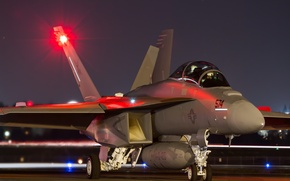 Picture weapons, the plane, EA-18G Growler