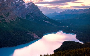 Picture summer, lake, Canada, Banff national Park, Peyto, By Panorama Paul, Canadian Rockies, August