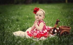 Picture flower, grass, basket, girl, child