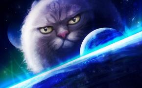 Picture cat, fiction, figure, planet