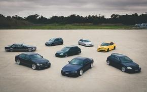 Picture Audi, Lexus, Volkswagen, Mitsubishi, Mercedes, Honda