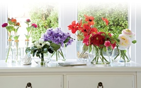 Picture flowers, roses, interior, window, buds, peonies, vases, bouquets, Asian Buttercup, Ranunculus, kamod