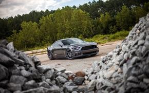 Picture Mustang, Ford, Stones, 2015, 0.5