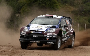 Picture ford, rally, Argentina, wrc, fiesta, 2013, E.Novikov