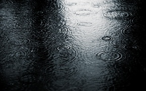 Wallpaper puddle, cold, black and white, nature, rain, drops