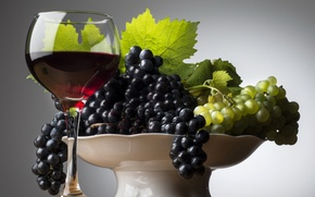 Picture green, table, wine, black, glass, grapes, vase