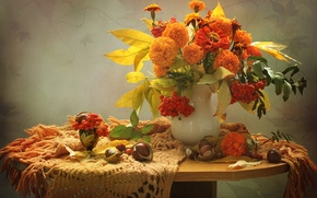 Picture autumn, Rowan, chestnuts, marigolds