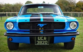 Picture retro, Ford Mustang, classic, the front, 1966