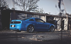 Picture Mustang, Ford, Ass, Ford, Muscle, Mustang, Car, Blue, 5.0, Kar, Oil