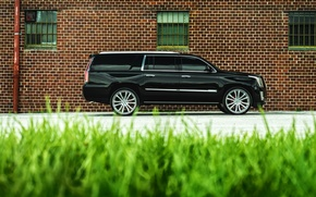 Picture car, jeep, SUV, Cadillac, rechange, hq Wallpapers, Cadillac Escalade