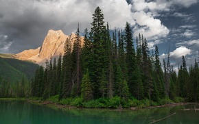 Picture forest, landscape, mountains, lake, ate