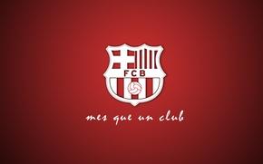 Picture club, Barcelona, Leopard, Barcelona, FCB, FC Barcelona, que, mes