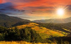 Picture autumn, the sky, grass, the sun, rays, trees, mountains, field, forest, yellow, hill