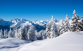 Picture winter, the sky, snow, trees, landscape, mountains, nature, blue, ate, tree