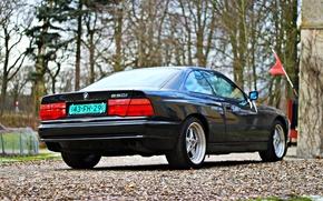 Picture BMW, black, BMW 8, bmw 8-series E31