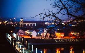 Picture road, trees, night, bridge, the city, lights, tree, branch, blur, Lithuania, Lithuania, Kaunas, Kaunas