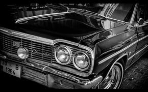 Picture classic, impala