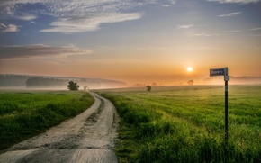 Picture road, field, sunset, fog, sign