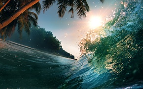 Picture palm trees, palm trees, Tropical paradise, Tropical Paradise, sunlight, sea wave, sea wave, sea, wave, ...