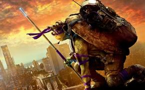 Wallpaper poster, glasses, pole, Teenage mutant ninja turtles 2, backpack, Donatello, headphones, the city, fantasy, Teenage ...