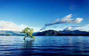 Picture clouds, mountains, lake, tree, crooked
