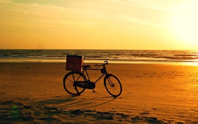Picture bicycle, beach, bike, sunset