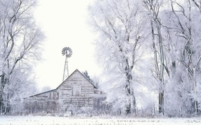 Picture trees, Winter, Snow, the barn