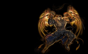 Picture power, the game, wings, warrior, art, male, character, level, skill, Youngmin suh