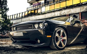 Picture car, auto, tuning, Dodge, Challenger, Dodge, muscle car