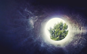 Picture tree, hole, through