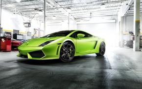 Picture Lamborghini, Gallardo, Green