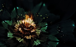 Picture flower, rays, light, abstraction, lights, graphics, glow, bokeh