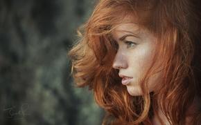 Wallpaper red, Jack Russell, Jenny O'sullivan, face, profile, hair, girl, photographer, girl, model, model