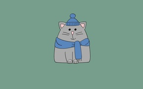 Picture cat, hat, minimalism, scarf, cat