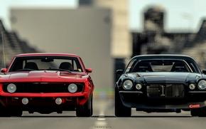 Picture red, black, Chevrolet Camaro, chevrolet camaro