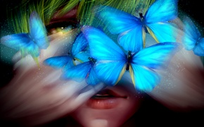 Picture butterfly, art, male, Free, Freedom, crow.w.w, Tachibana Makoto, Tachibana Makoto